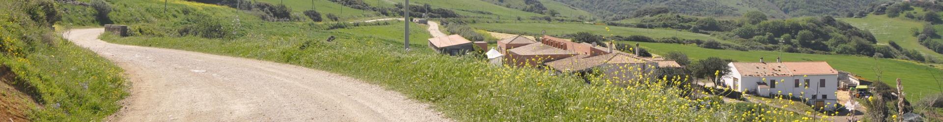 Sa Tanca Noa Farmhouse