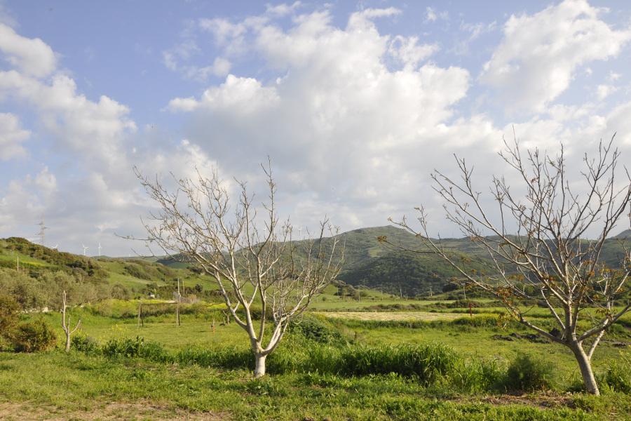 Terreni e colline